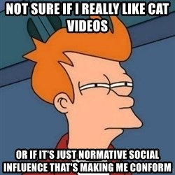 Not sure if troll - not sure if i really like cat videos or if it's just normative social influence that's making me conform