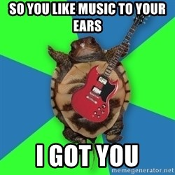 Aspiring Musician Turtle - So you like music to your ears I got you