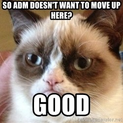 Angry Cat Meme - So ADM doesn't want to move up here? GOOD