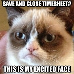 Angry Cat Meme - Save and close Timesheet? This is my excited face