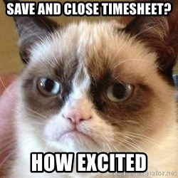 Angry Cat Meme - save and close timesheet? how excited