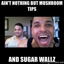 The Hodgetwins - AIN'T NOTHING BUT MUSHROOM TIPS  AND SUGAR WALLZ