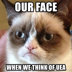 Angry Cat Meme - Our face  When we think of UEA