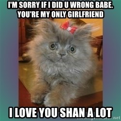 cute cat - I'm sorry if I did u wrong babe. you're my only girlfriend I love you Shan a lot
