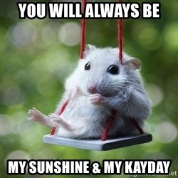 Sorry I'm not Sorry - You will always be My sunshine & my Kayday