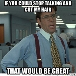 That would be great - If you could stop talking and cut my hair That would be great