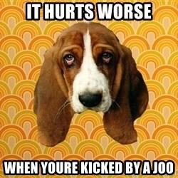 SAD DOG - IT HURTS WORSE WHEN YOURE KICKED BY A JOO