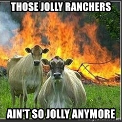 Evil Cows - Those jolly ranchers ain't so jolly anymore
