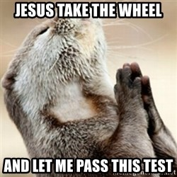 Praying Otter - Jesus take the wheel And let me pass this test