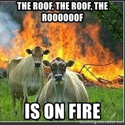 Evil Cows - The Roof, the roof, the roooooof is on fire