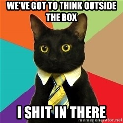 Business Cat - We've got to think outside the box I shit in there