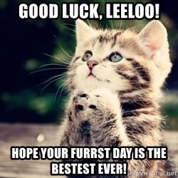 good luck cat - GOOD LUCK, LEELOO! HOPE YOUR FURRST DAY IS THE BESTEST EVER!