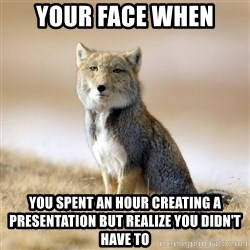 Disappointed Tibetan Fox - Your face when you spent an hour creating a presentation but realize you didn't have to