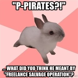 """Roleplay Shipper Bunny - """"P-Pirates?!"""" ... What did you think he meant by """"freelance salvage operation""""?"""