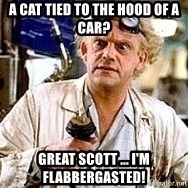 Doc Back to the future - A cat tied to the hood of a car? Great Scott ... I'm flabbergasted!