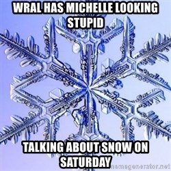 Special Snowflake meme - WRAL has Michelle looking stupid talking about snow on Saturday