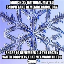 Special Snowflake meme - march 25 national melted snowflake rememberance day share to remember all the frozen water droplets that met warmth too soon