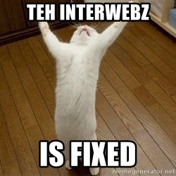 praise the lord cat - teh interwebz  is fixed