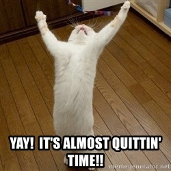praise the lord cat -  Yay!  It's Almost Quittin' Time!!