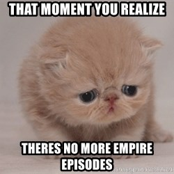 Super Sad Cat - that moment you realize theres no more empire episodes