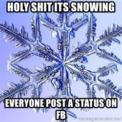 Special Snowflake meme - holy shit its snowing  everyone post a status on fb