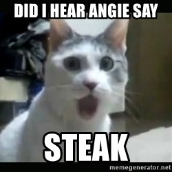 Surprised Cat - did I hear angie say STEAK