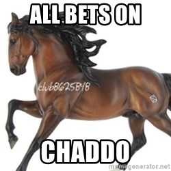 Typical horse model collector - All bets on  Chaddo