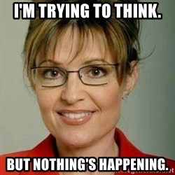 Sarah Palin - I'm trying to think. But nothing's happening.