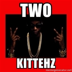 2 chainz valentine - two kittehz