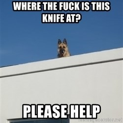 Roof Dog - Where the fuck is this knife at? Please help