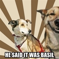 Stoner dogs concerned friend -  He said it was basil