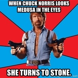 Chuck Norris  - when chuck norris looks medusa in the eyes she turns to stone.