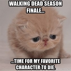 Super Sad Cat - Walking Dead Season Finale... ...time for my favorite character to die.