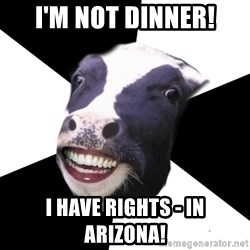 Restaurant Employee Cow - I'm not dinner! I have rights - in Arizona!