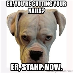 stahp guise - ER, YOU'RE CUTTING YOUR NAILS? ER, STAHP. NOW.