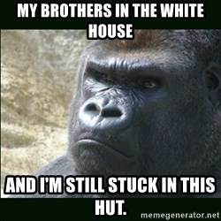 Rustled Jimmies - My brothers in the white house and i'm still stuck in this hut.