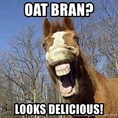 Horse - oat bran? looks delicious!