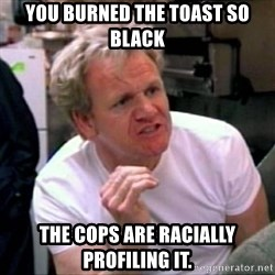 Gordon Ramsay - you burned the toast so black the cops are racially profiling it.