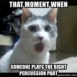 Surprised Cat - That moment when Someone plays the right percussion part