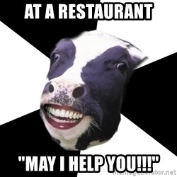 """Restaurant Employee Cow - at a restaurant  """"may I help YOU!!!"""""""