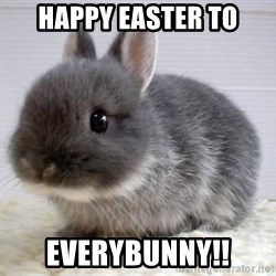 ADHD Bunny - Happy Easter to Everybunny!!