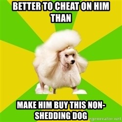 Pretentious Theatre Kid Poodle - Better to cheat on him than Make him buy this non-shedding dog
