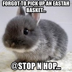 ADHD Bunny - Forgot to pick up an Eastah Basket... @Stop n Hop...