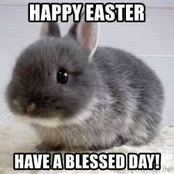 ADHD Bunny - happy easter have a blessed day!