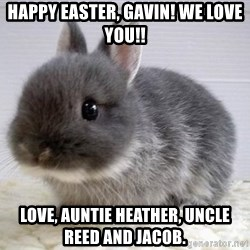 ADHD Bunny - Happy Easter, Gavin! We love you!! Love, Auntie Heather, Uncle Reed and Jacob.