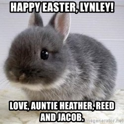 ADHD Bunny - Happy Easter, Lynley! Love, Auntie Heather, Reed and Jacob.