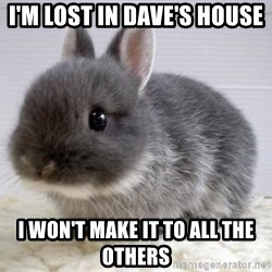 ADHD Bunny - I'm lost in Dave's house I won't make it to all the others