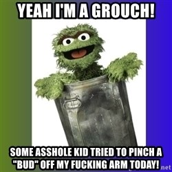 "Oscar the Grouch - Yeah I'm a grouch! Some asshole kid tried to pinch a ""bud"" off my fucking arm today!"