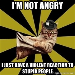 Frustrated Journalist Cat - i'm not angry i just have a violent reaction to stupid people