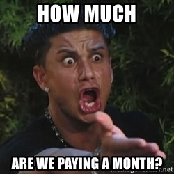 Flippinpauly - how much are we paying a month?